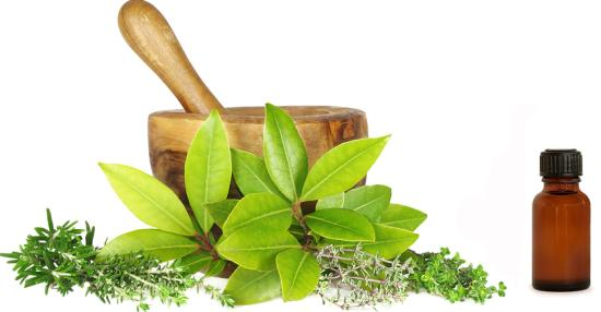 naturopathy methods