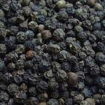 Health Benefits of Black Pepper : Herbs