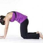 Marjaryasana : Yoga Pose