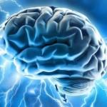 Ayurvedic Treatment for Loss of Memory